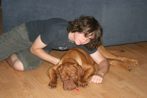 my human brother USED to be a cat person, now he is a dogue lover